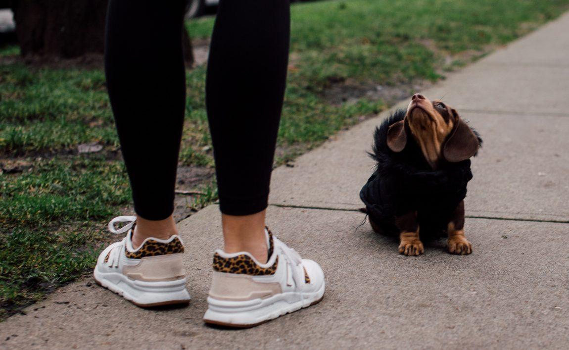 Start walking with Jenna Maxwell. Person walking a dog.